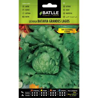 Semi di lattuga Batavia 6 gr.