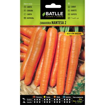 Semillas de Zanahoria Natense Temprana 10gr.