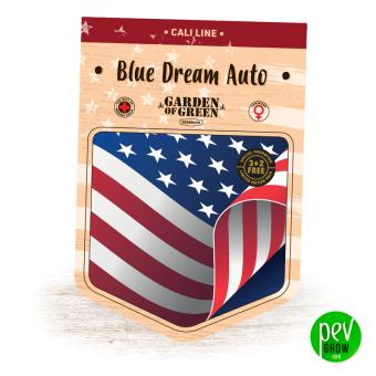 Blue Dream Auto