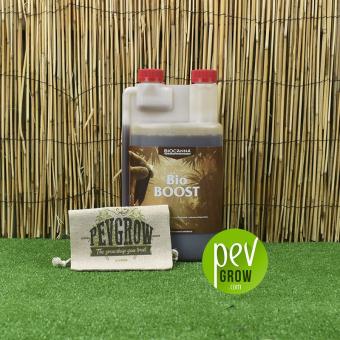 Bio Boost von Canna , transparenter Behälter mit einem braunen Zusatz, der auf Schilf und Gras steht.