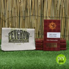 Image of the original Barneys Farm packaging, in a small maroon cardboard container.