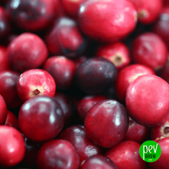Rote Heidelbeere Extrakt