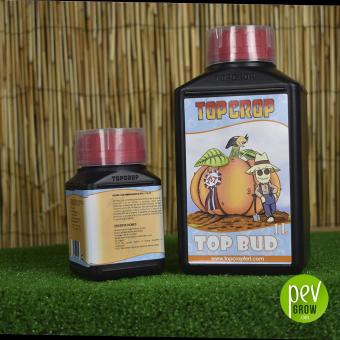 Top Bud en botellas de 1L y 250 ml