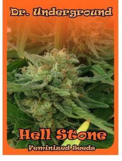 hell-stone-dr-underground