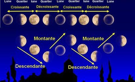 Prenez vous en compte la lune pour cultiver du cannabis - Lune montante et descendante ...