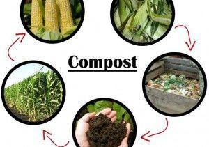 Faites votre propre compost fait maison