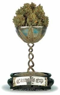01-cannabis-cup-winners