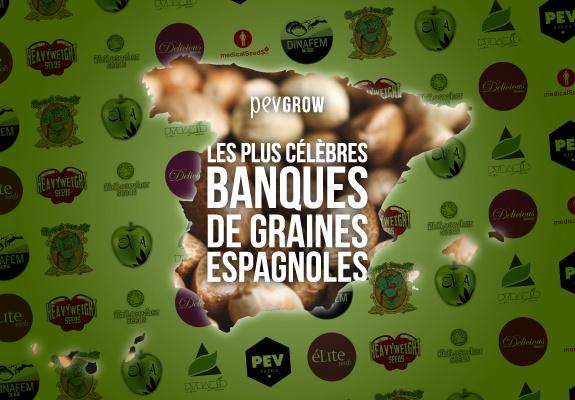 Image avec une photo de l'Espagne remplie de graines de cannabis avec un fond de logos de banques espagnoles.