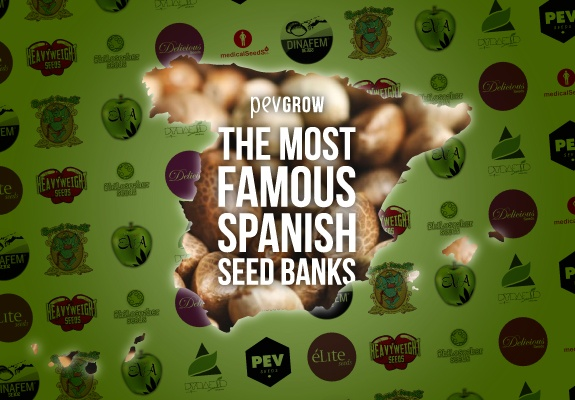 The Most Famous Spanish Seed Banks