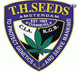 th_seeds_logo-567x238