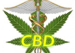 Qu'est-ce que le CBD?