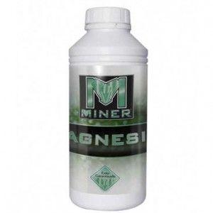 el magnesio, átomo central de la clorofila