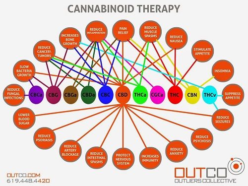 Cannabinoid therapy