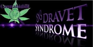 sindrome dravet cannabidiol
