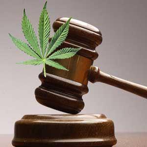 """Cour suprême: """"Le cannabis doit être un acte intime sans importance pour le public""""."""