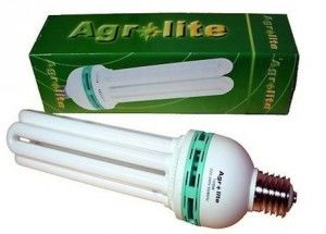 compact fluorescent Agrolite growth
