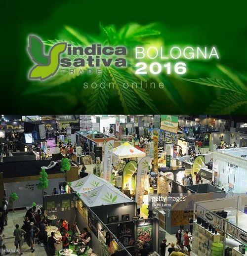 The Italian Marijuana Party, the Indica Sativa Trade