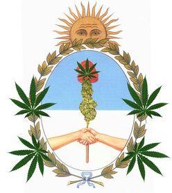 Marijuana in Argentina