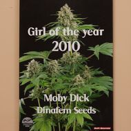 Named by readers of 'Soft Secrets' , 'Girl of the Year 2010'