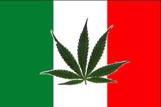 Marijuana in Italy