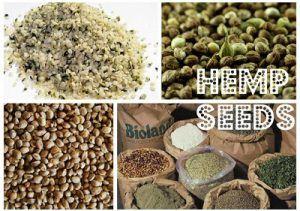 Propiedades nutricionales de las semillas de cáñamo