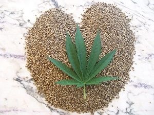 hemp as a medicinal supplement