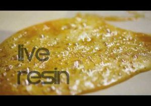 Live Resin, extracciones de cannabinoides