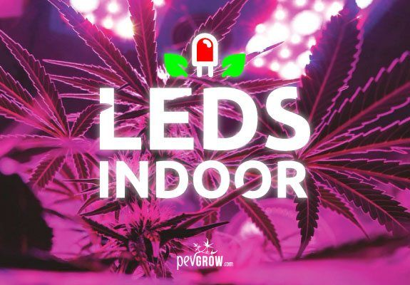 LED lighting technology in my indoor marijuana crop