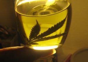 Hemp oil, a source of nutrients
