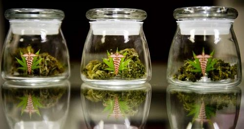 Medical marijuana in pharmacies, Utopia or reality?