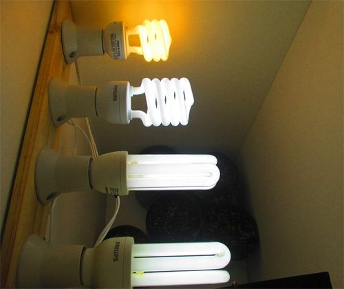 There are many types of lighting.
