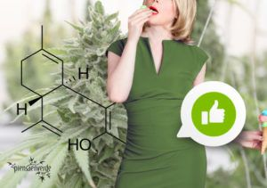 Benefits of cannabis preparations for inflammatory bowel diseases