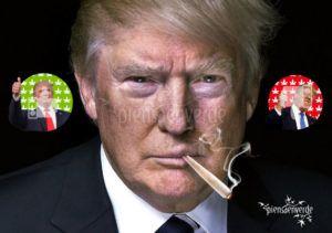 Trump y marihuana, esta semana en los medios de comunicación