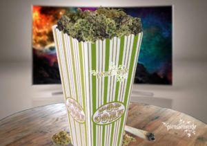 Marijuana and cinema: movies to see been smokes