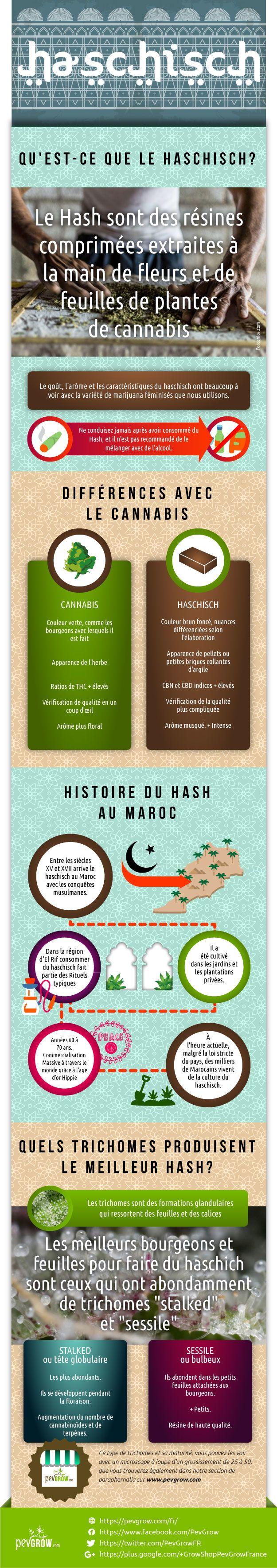 Infographie sur le haschich