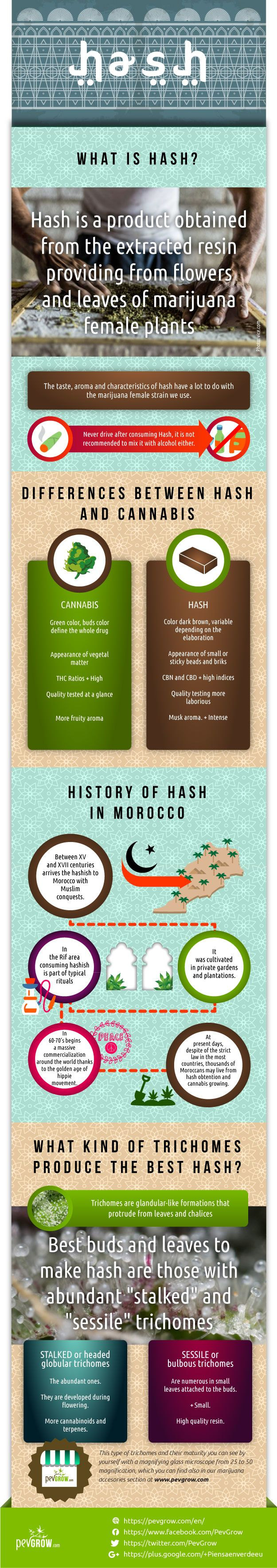 Infographic about hashish