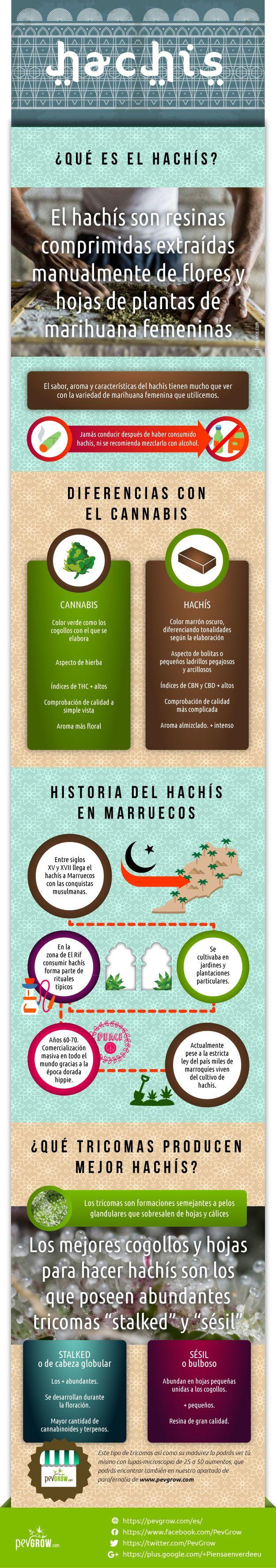 Infografia sobre el hachís