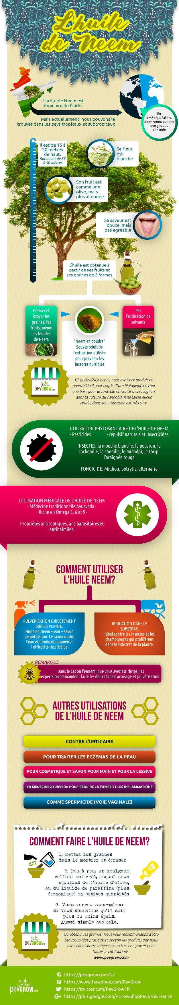 Infographie sur l´huile de Neem
