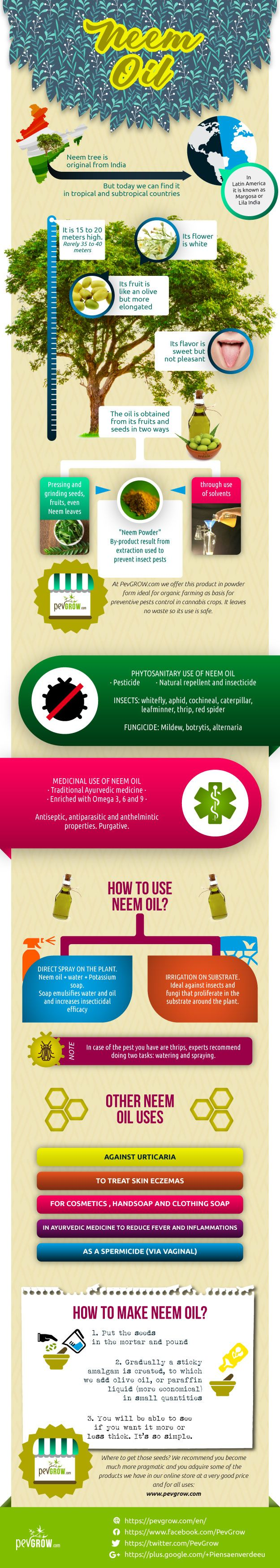Infographic about Oil Neem