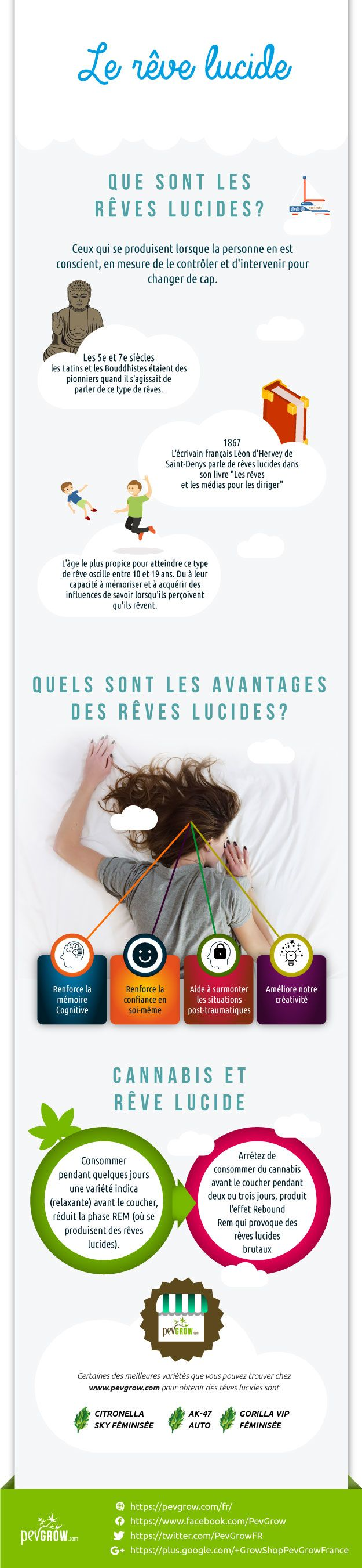 Infographie rêve lucide