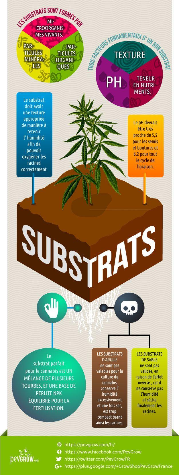 Infographie sur les substrats