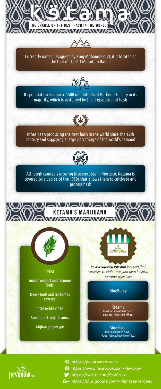 Ketama Marijuana Infographics