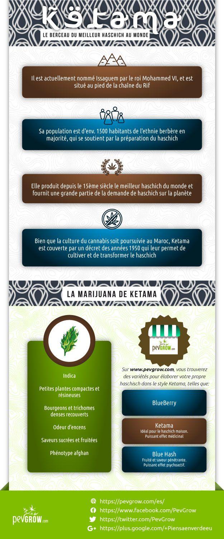 Infographie sur la cannabis de Ketama