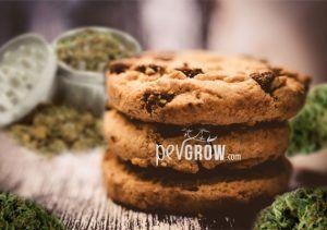 Cómo hacer galletas / cookies de marihuana