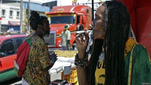 Jamaica: The Cradle of Marijuana