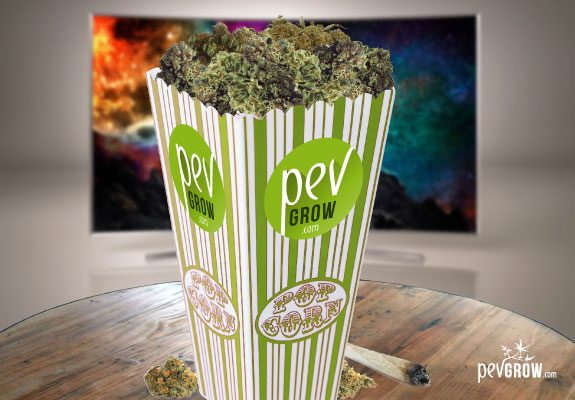 Films et documentaires sur le cannabis