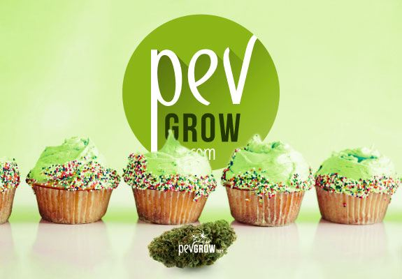 Image showing several cupcakes next to a cannabis bud*
