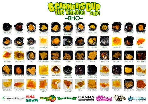 Sixth edition of the THC Valencia Cup 30 January 2016 BHO