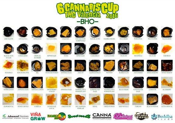 Sexta Edición Copa THC Valencia 30 Enero 2016 BHO