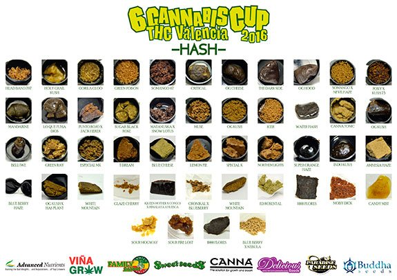 Sixth edition of the THC Valencia Cup 30 January 2016 Hash